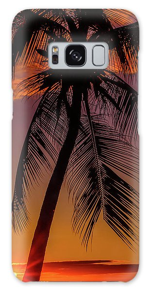 Sunset At The Palm Galaxy Case