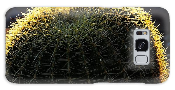 Sunset Cactus Galaxy Case