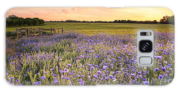 Scenery Galaxy Case - Sunset Over A Wild Flowers In Cornwall by Lukasz Pajor