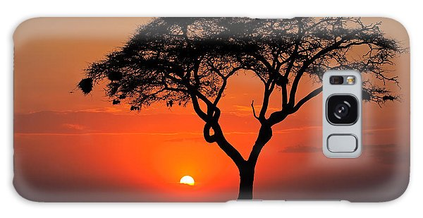 Scenery Galaxy Case - Sunset With Silhouetted African Acacia by Ecoprint