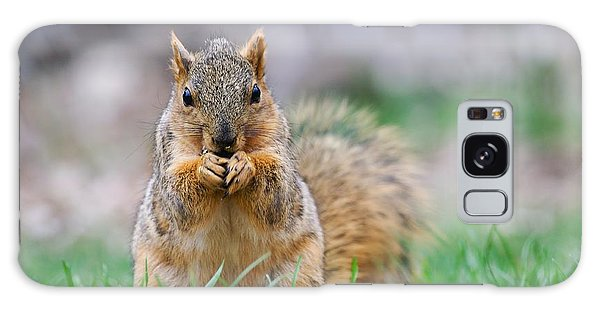 Super Cute Fox Squirrel Galaxy Case