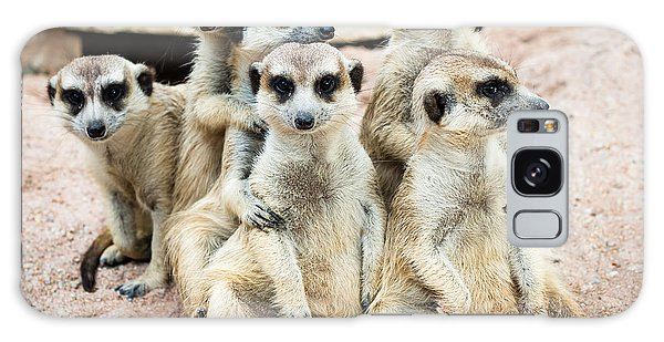 Ecology Galaxy Case - Suricate Or Meerkat Family by Tratong