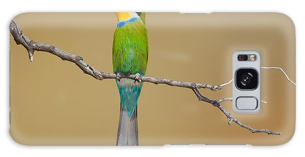 Perches Galaxy Case - Swallow-tailed Bee-eater Merops by Johan Swanepoel