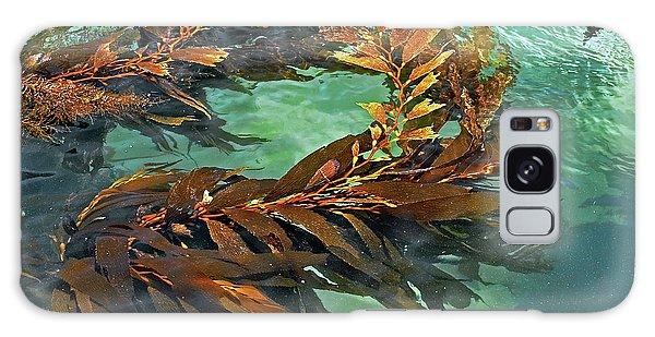 Swaying Seaweed Galaxy Case