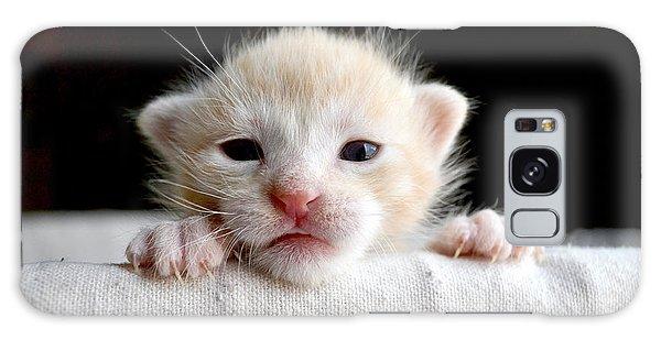 Claws Galaxy Case - Sweet Newborn Orange Tabby Kitten by Mw47