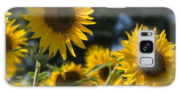 Sweet Sunflowers Galaxy Case