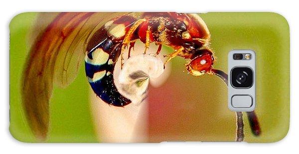 Swirly Wasp Galaxy Case