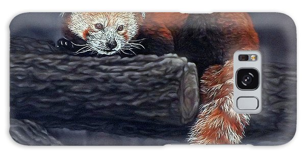 Takeo, The Red Panda Galaxy Case