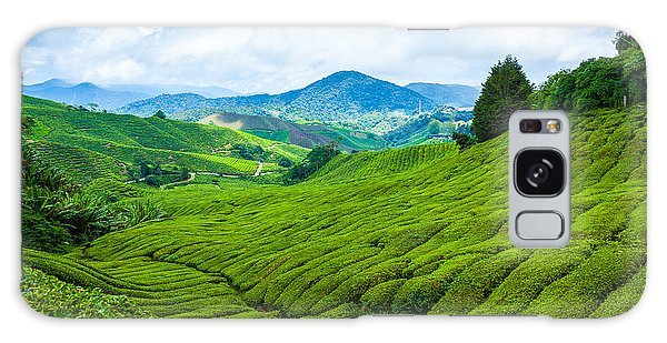 Farmland Galaxy Case - Tea Plantation In Cameron Highlands At by Blackcat Imaging