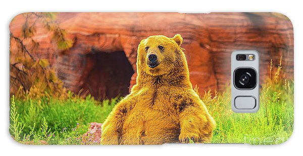 Teddy Bear Galaxy Case