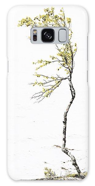 The Birch Tree Galaxy Case