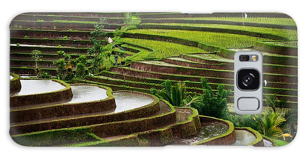 Farmland Galaxy Case - The Dramatic And Graphic Rice Terraces by Edmund Lowe Photography