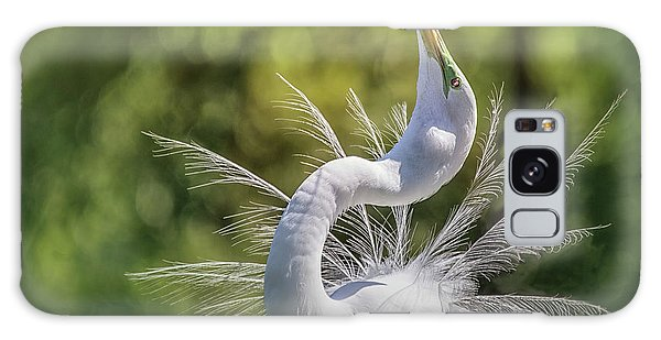 The Great White Egret Mating Dance Galaxy Case
