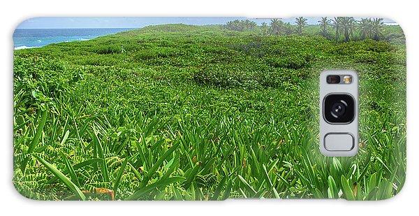 The Green Island Galaxy Case