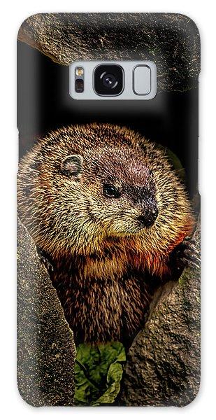 Groundhog Galaxy Case - The Groundhog by Bob Orsillo