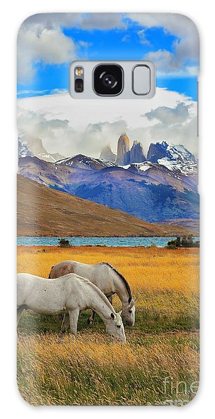 Pasture Galaxy Case - The Landscape In The National Park by Kavram