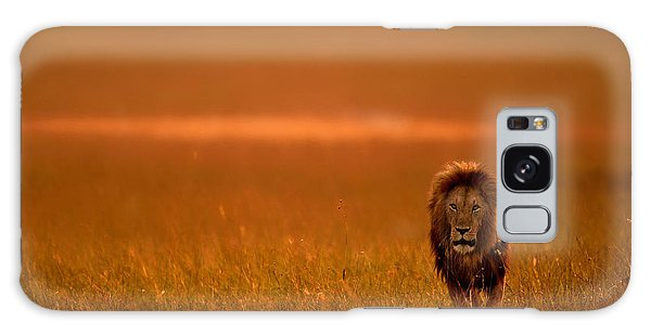 Young Galaxy Case - The Lion King by Varun Aditya