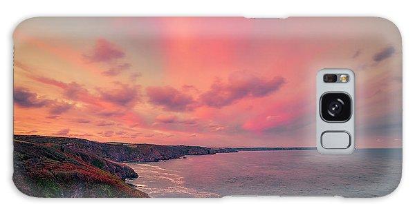 The Lizard Point Sunset Galaxy Case