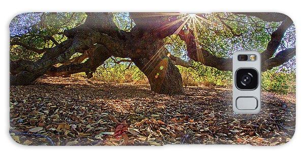 The Old Oak Galaxy Case