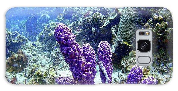 The Purple Sponge Galaxy Case