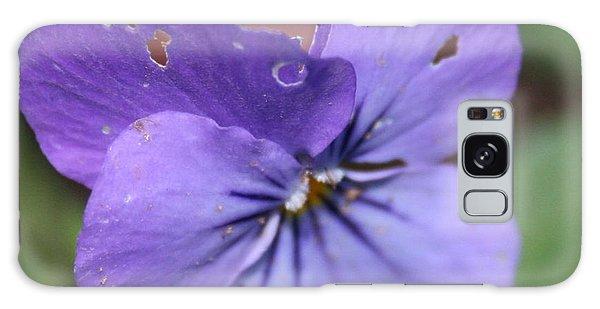The Raggedy Viola Galaxy Case