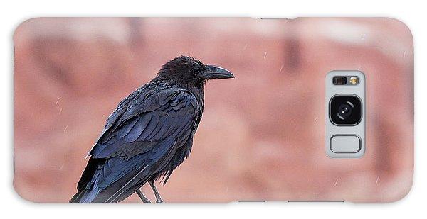 The Rainy Raven Galaxy Case