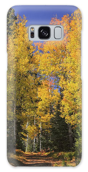 Galaxy Case featuring the photograph The Road A Little Less Traveled by Rick Furmanek