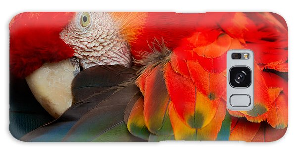 Macaw Galaxy Case - The Scarlet Macaw Is A Large Colorful by Ammit Jack