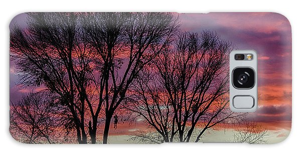 The Trees Know Sunset Galaxy Case