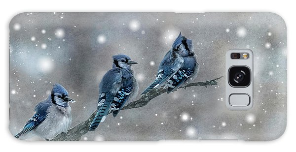 Three Blue Jays In The Snow Galaxy Case