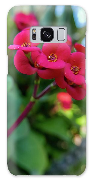 Tiny Red Flowers Galaxy Case