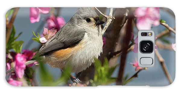 Titmouse And Peach Blossoms Galaxy Case