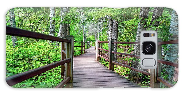 Trail At Gooseberry Falls Galaxy Case