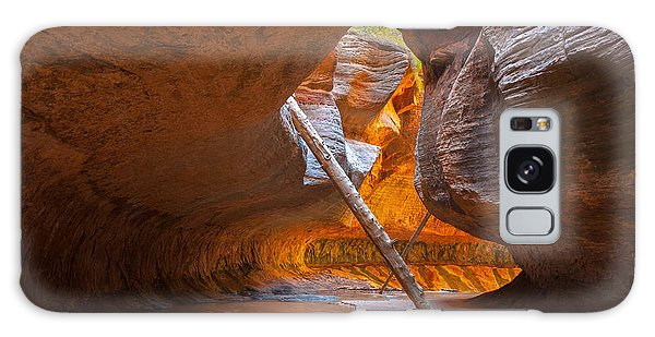 Southwest Usa Galaxy Case - Tree In The Subway - Left Fork In Zion by Andrmoel