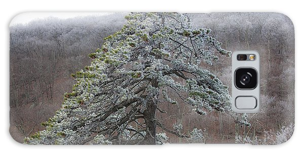 Tree With Hoarfrost Galaxy Case