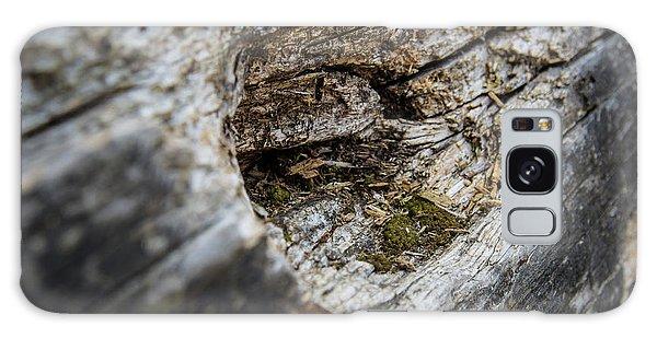 Tree Wood Galaxy Case