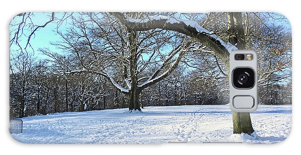 Trees In The Snow Galaxy Case