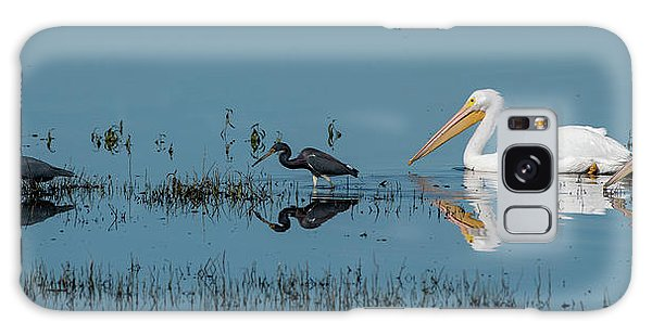 Tricolored Herons And American White Pelicans Galaxy Case