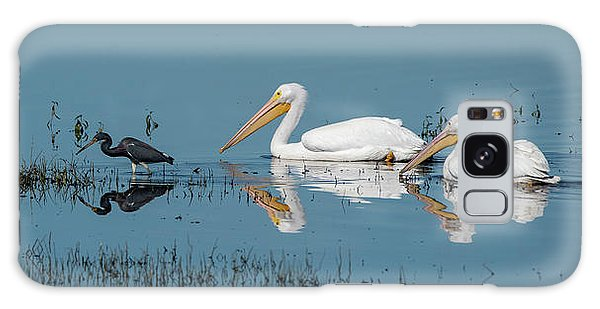 Galaxy Case featuring the photograph Tricolored Herons And American White Pelicans by Ken Stampfer