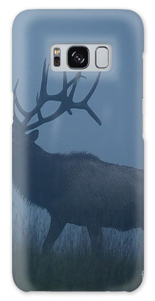 National Park Galaxy Case - Trophy Bull Elk With Huge Record Class by Tom Reichner