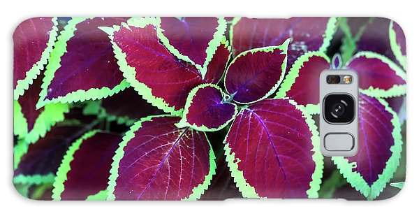 Tropical Leaves Galaxy Case