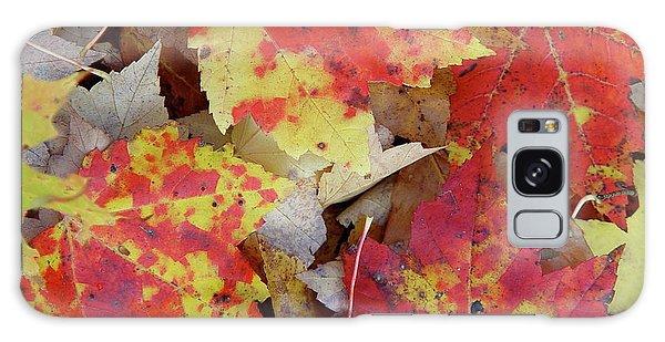 True Autumn Colors Galaxy Case