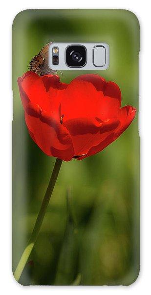 Tulip And Skipper Galaxy Case