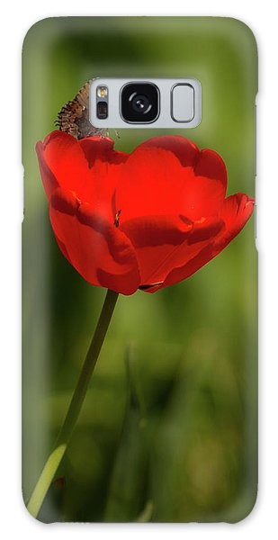 Tulip And Skipper Galaxy Case