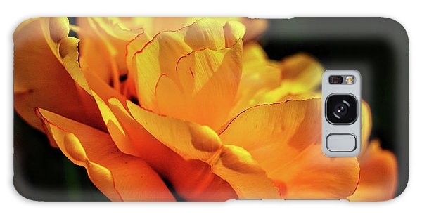Brookside Gardens Galaxy Case - Tulip Exposed by Kathi Isserman