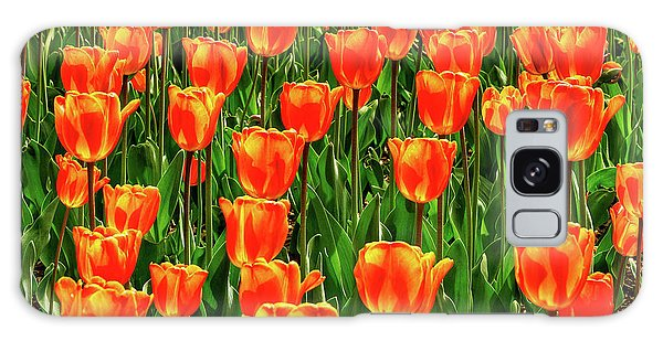 Brookside Gardens Galaxy Case - Tulips 2019c by Kathi Isserman