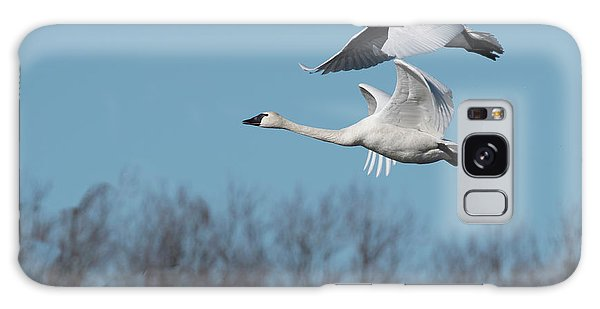 Galaxy Case featuring the photograph Tundra Swan Duo by Donald Brown