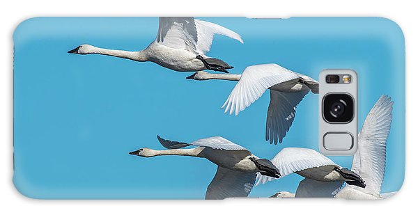 Galaxy Case featuring the photograph Tundra Swans In Flight by Donald Brown