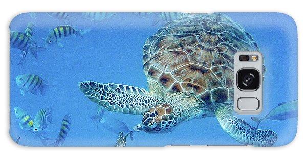 Turning Turtle Galaxy Case