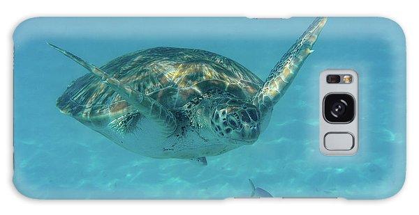 Turtle Approaching Galaxy Case